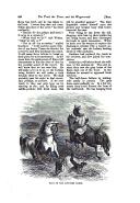 Seite 456
