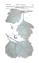 Seite 857