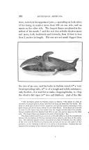 Seite 304