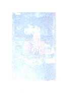 Seite 16848