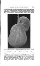 Seite 593
