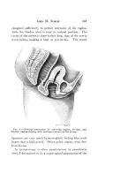 Seite 367
