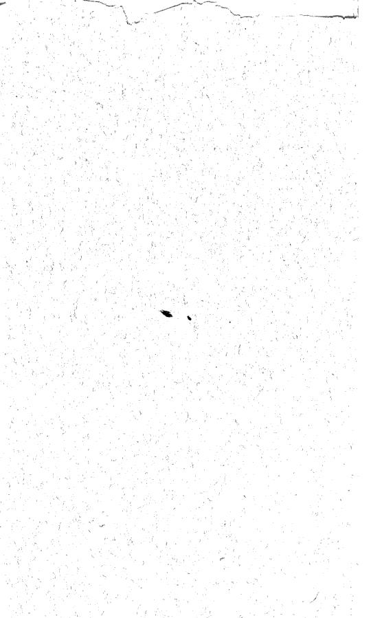 [merged small][ocr errors][merged small]