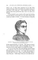 Seite 732