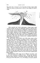 Seite 450