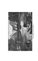 Seite 514